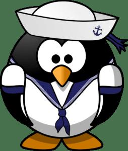 pénalité penguin